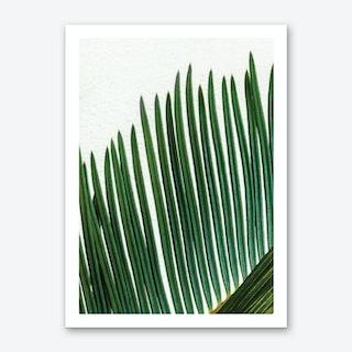 Plant Range I