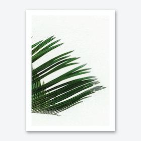 Plant Range III Art Print