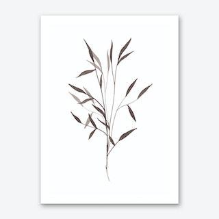 Black Leaf Art Print
