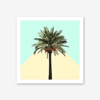 Palm Tree on Cyan and Lemon Wall Art Print