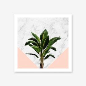 Banana Plant on Pink and Marble Wall Art Print