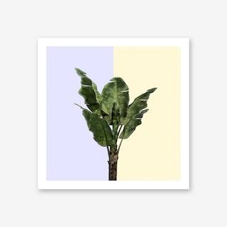 Banana Plant on Yellow and Blue Wall Art Print