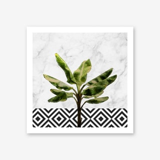 Banana Plant on White Marble and Checker Wall Art Print