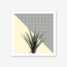 Dracaena Plant on Lemon and Lattice Pattern Wall Art Print