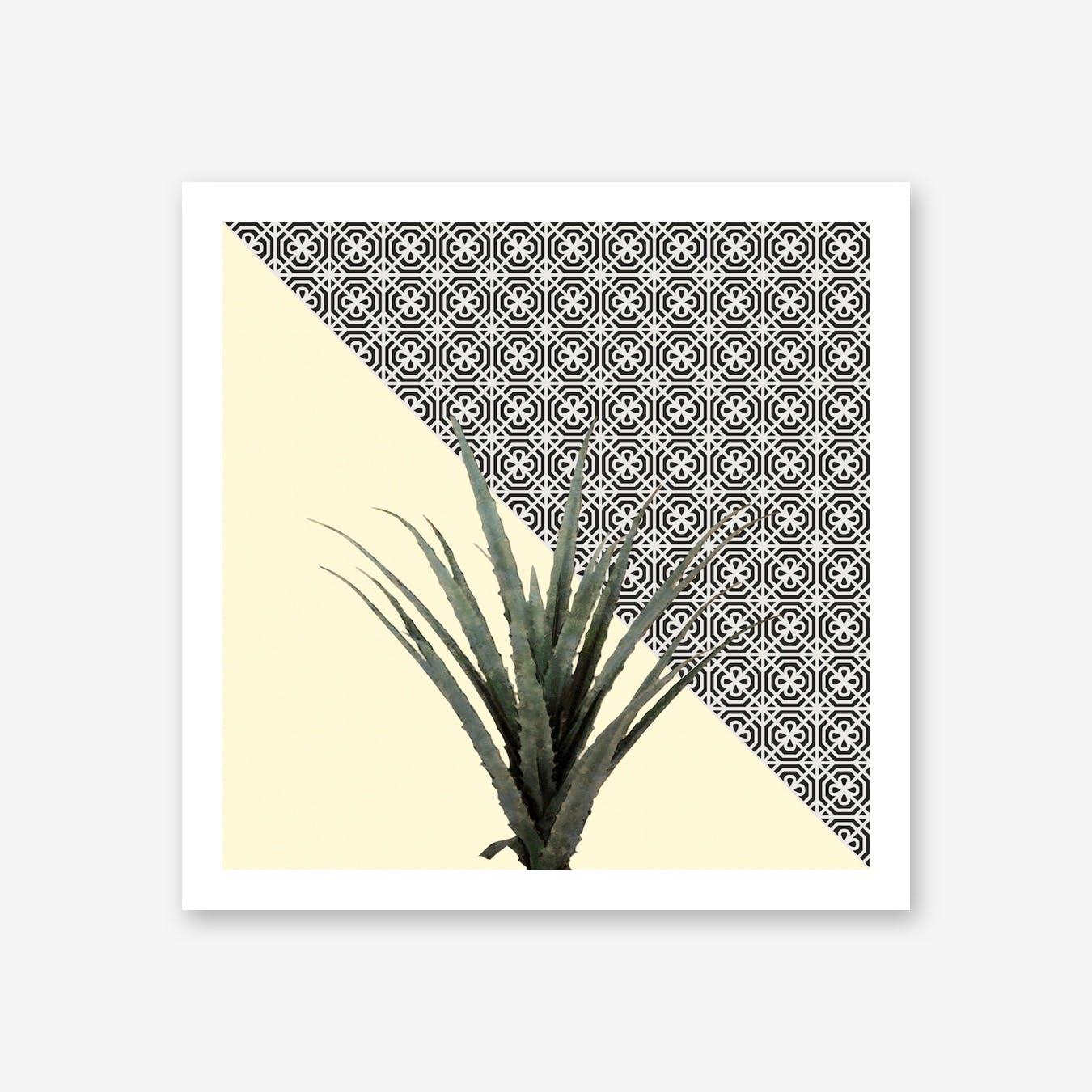 Dracaena Plant on Lemon and Lattice Pattern Wall
