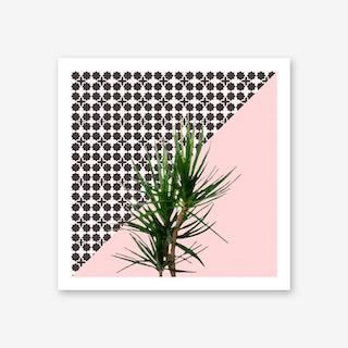 Dracaena Plant on Pink and Lattice Pattern Wall Art Print