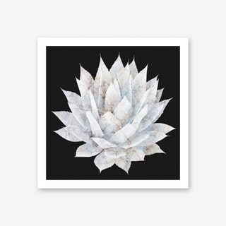 Agave White Marble Art Print