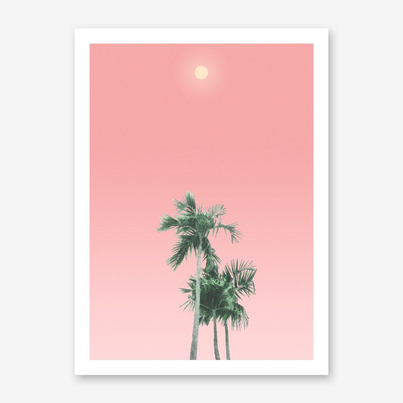 Palm Trees, Sun and Sky