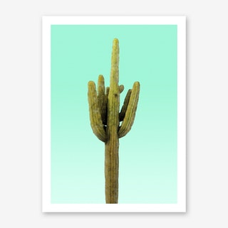 Cactus on Cyan Wall Art Print