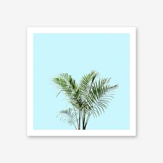 Palm Plant on Pastel Blue Wall Art Print