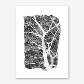Tree Foliage on Black Art Print
