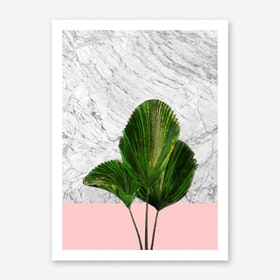 Palm Plant on Marble and Pink Wall Art Print