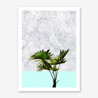 Palm Plant on Marble and Pastel Blue Wall Art Print