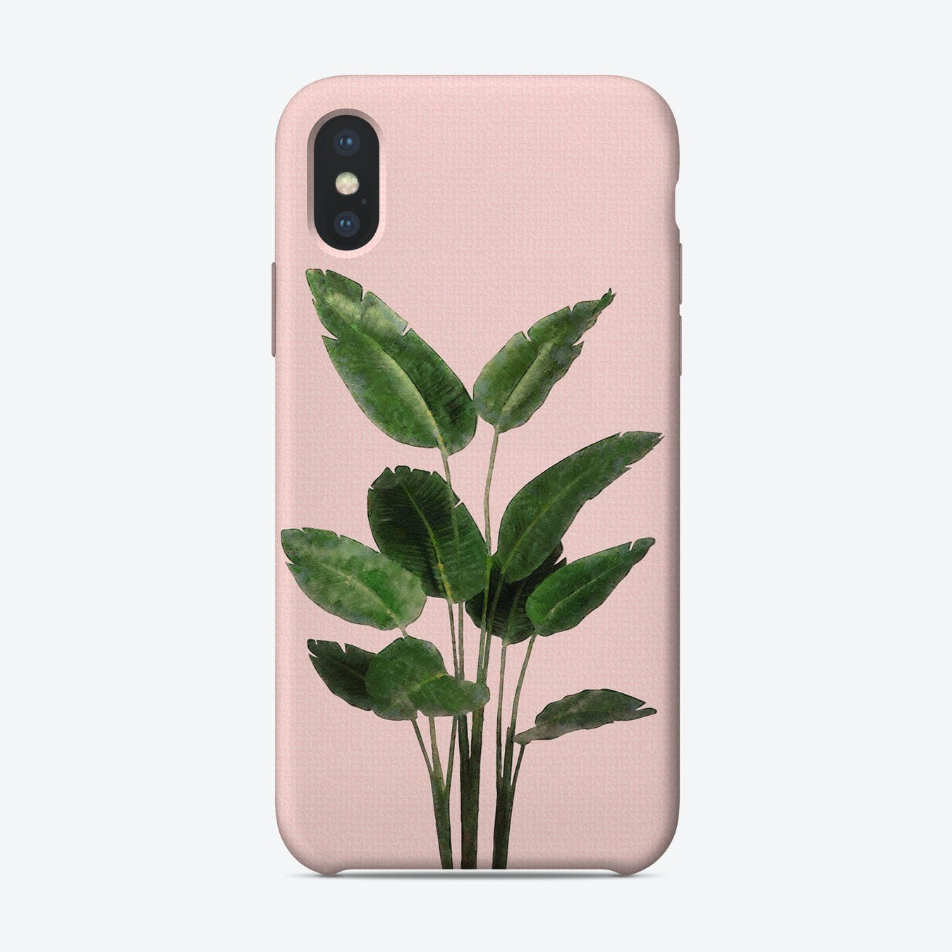 Bird of Paradise Plant on Pink iPhone Case