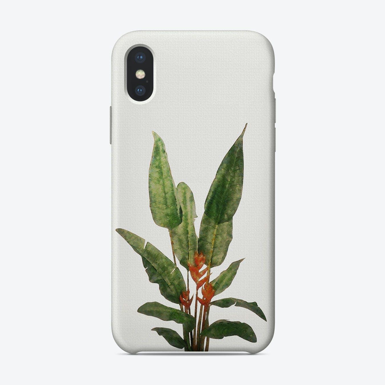 Bird of Paradise Plant on White iPhone Case