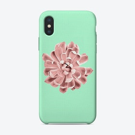 Pink Succulent Plant on Cyan iPhone Case