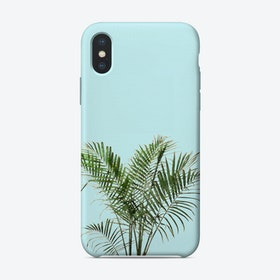 Palm Plant on Pastel Blue Wall iPhone Case