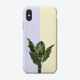Banana Plant on Yellow and Blue Wall iPhone Case