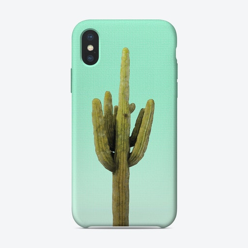 Cactus on Cyan Wall iPhone Case