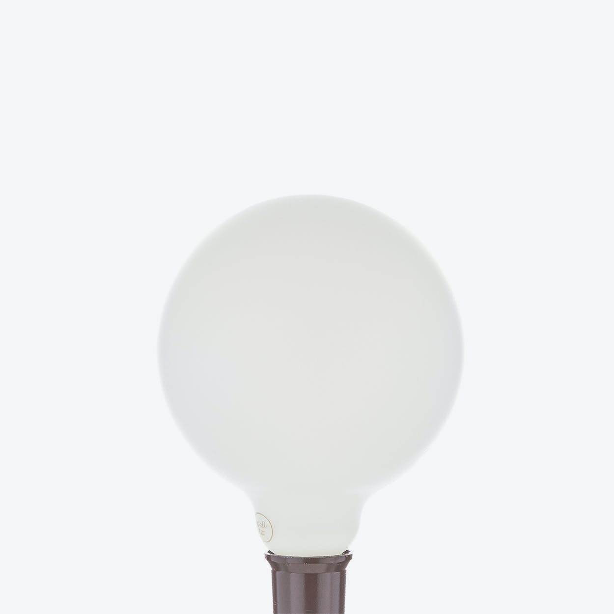 Calypso LED Filament Light Bulb in Frosted Glass