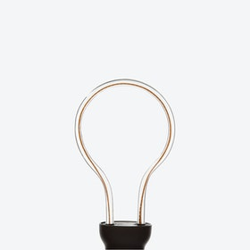 Aray60 LED Filament Light
