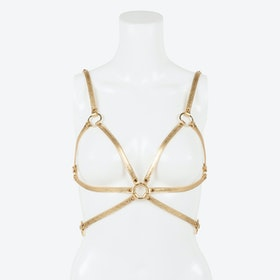 Champagne Harness