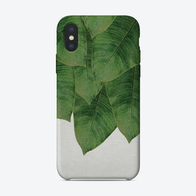 Banana Leaf I iPhone Case