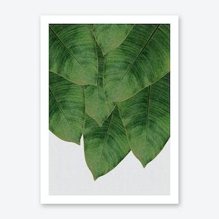 Banana Leaf I Art Print