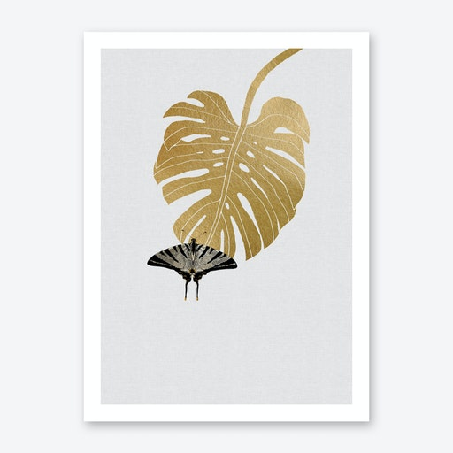Butterfly & Monstera