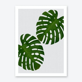 Monstera Leaf II Art Print