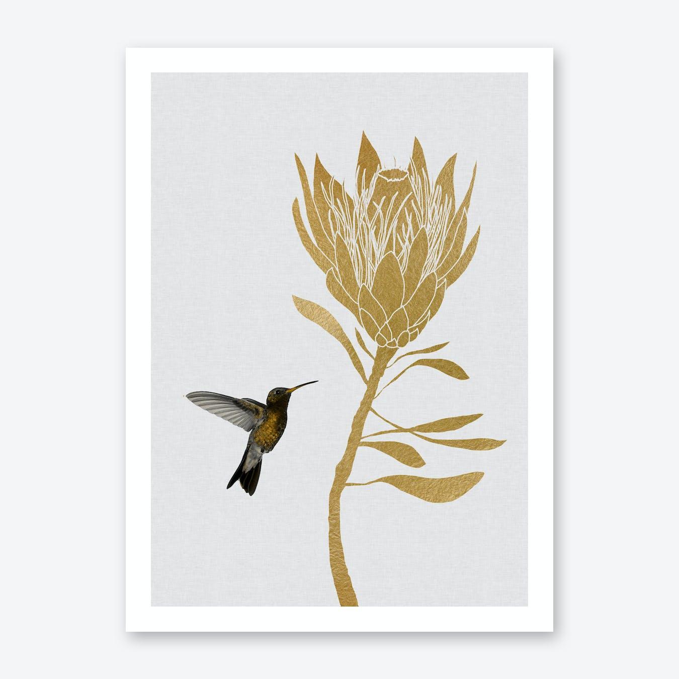 Hummingbird & Flower I