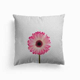 Daisy Still Life Cushion