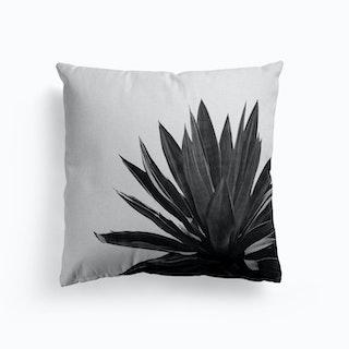 Agave Cactus Black And White Cushion