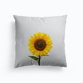 Sunflower Still Life Cushion