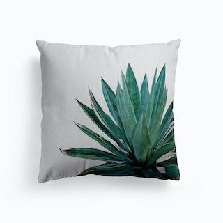 Agave Cactus Cushion
