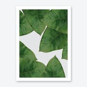Banana Leaf II Art Print