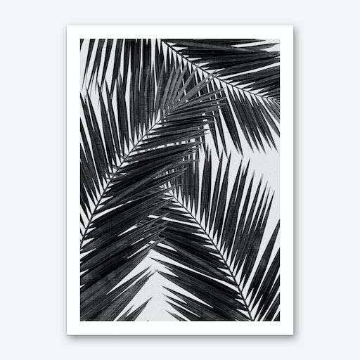 Palm Leaf Black & White III Art Print