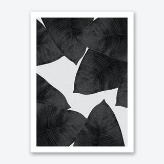 Banana Leaf Black & White I Art Print