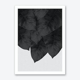 Banana Leaf Black & White II Art Print
