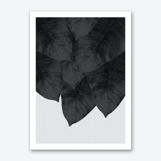Banana Leaf Black & White II Art Print