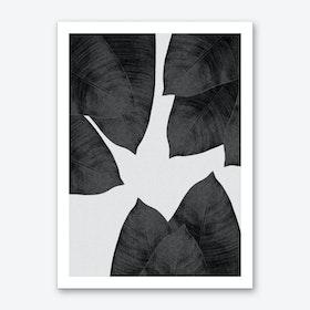 Banana Leaf Black & White III Art Print