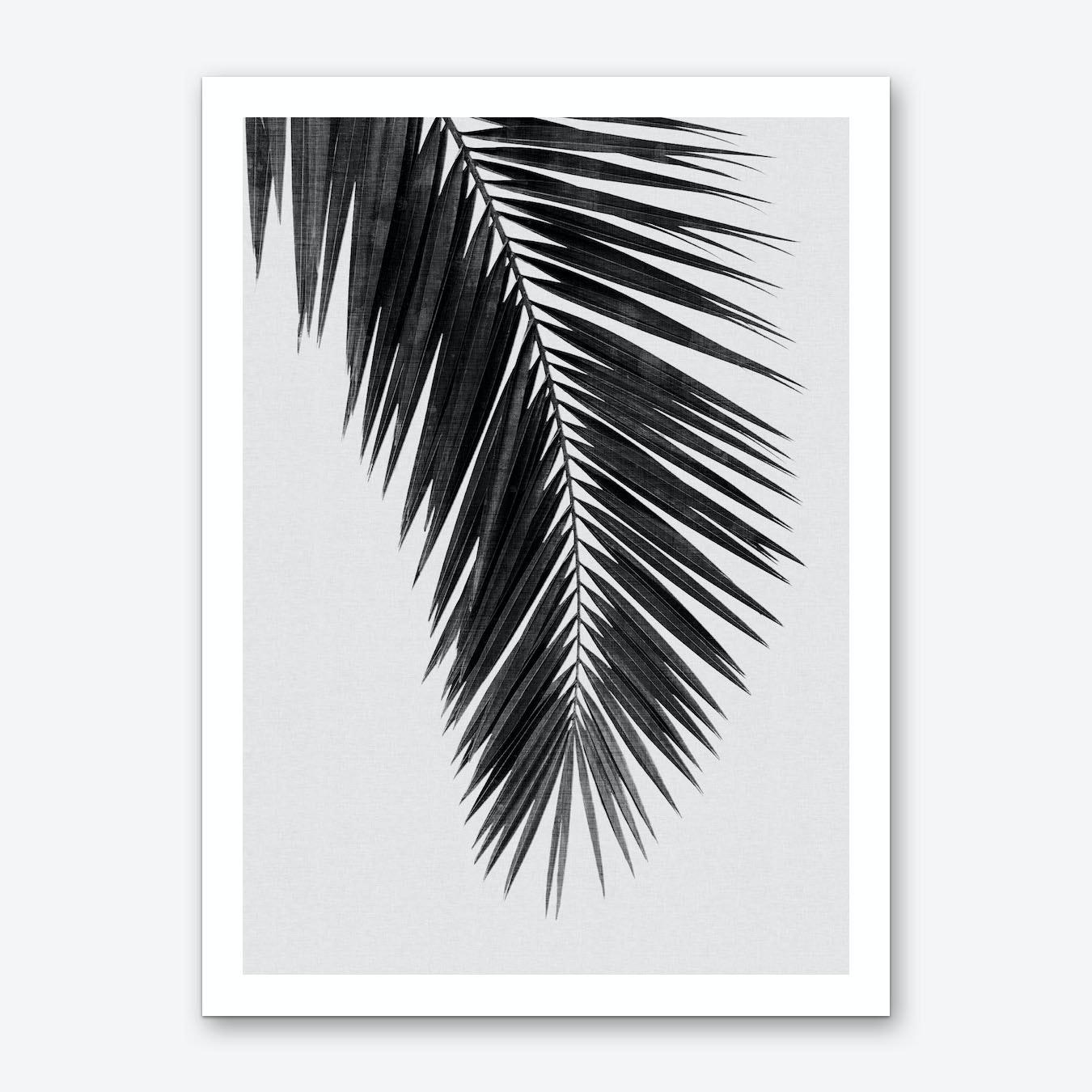 Palm leaf black white i art print by orara studio