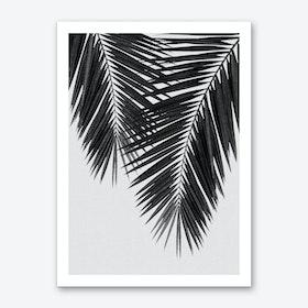 Palm Leaf Black & White II Art Print