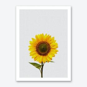 Sunflower Still Life Art Print