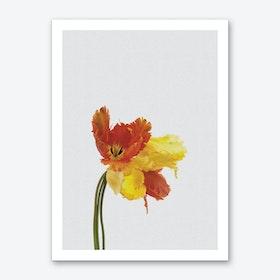 Tulip Still Life Art Print