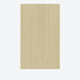 Solid Rug in Textured Cream
