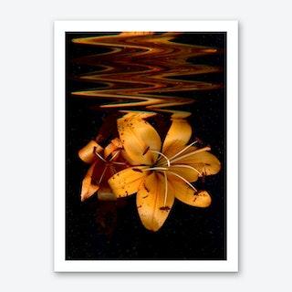 Flower IV Art Print