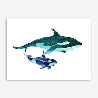A Swim Together Art Print