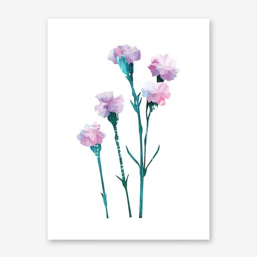Flower Power #3