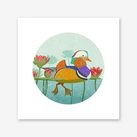 Mandarin Duck Art Print